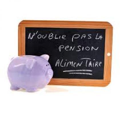 Droit de la Famille : Quelles sont les conditions de la pension alimentaire du conjoint survivant sur la succession du conjoint précédé ?